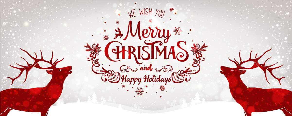 We wish you a Merry Christmas and Happy Holidays!